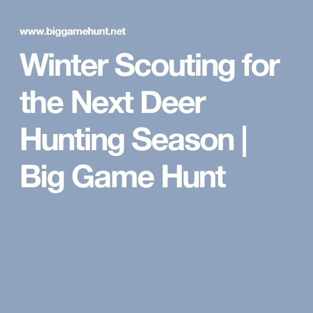 Winter Scouting for the Next Deer Hunting Season | Big Game Hunt