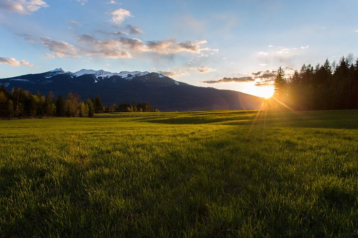 Green Sunset Field Stock 6 by leeorr-stock on deviantART