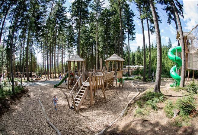 Kudy z nudy - Království lesa na Lipně