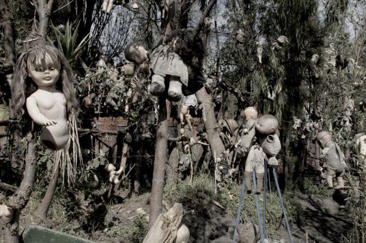 Faites-vous partie de ces gens qui ont peur du film « la poupée Chucky » ? Si oui, alors votre cauchemar va se réaliser. Dans la région de Xochimilco, au sud de la ville de Mexico, se raconte une histoire de fantôme sur la noyade d'une petite fille. Dans les années 50, un homme du nom de Don Julian Santana Barrera décida de collecter des poupées pour les accrocher aux branches afin d'apaiser l'esprit de cette fillette. En 2001, l'homme fut retrouvé noyé à l'âge de 80 ans. De quoi nous…