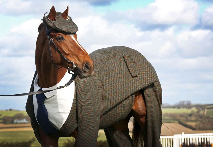 traje-tweed-caballo-carreras (1)