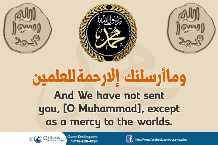 why is muhammad pbuh important to View all comments about muhammad in our top ten list of most influential people of all time or add a new comment about muhammad.