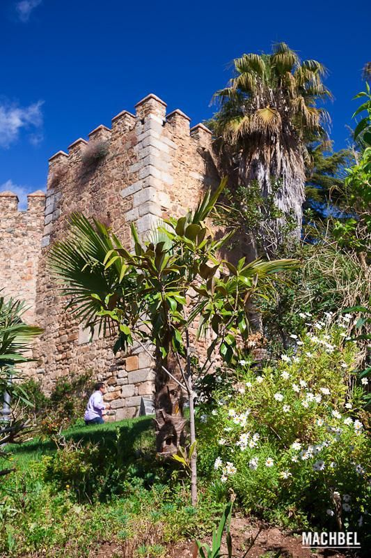 Un señor sube por un camino rodeado de palmeras alrededor del castillo de Jerez de los Caballeros, Extremadura