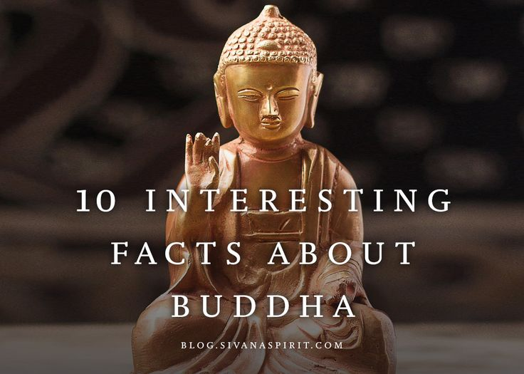 10 Interesting Facts About Buddah - he's from south India and not the chubby character made popular by the east...