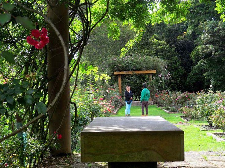 11. Los visitantes recorren los jardines que ocasionalmente tienen bancas debajo de pérgolas con enredaderas.