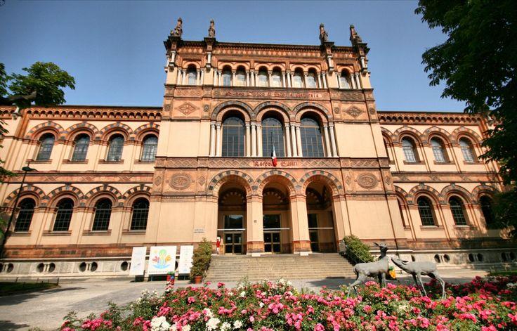 Museo Civico di Storia Naturale **entrare lbero per tutti sotto 18** Corso Venezia,55-20121 Milano, numero +39 02 88463337, martedi-domenica 9:00 am- 5:30 pm