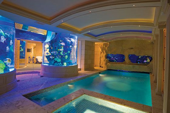indoor pool with massive fish tank home pool