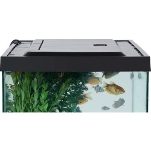 Best 25 20 gallon aquarium ideas on pinterest for 55 gallon fish tank led light hood