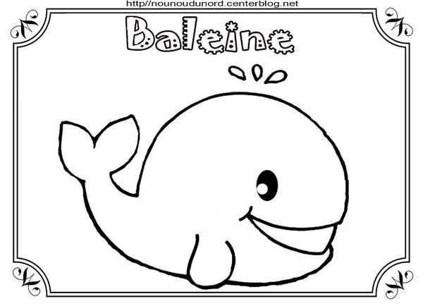 103 best coloriages images on pinterest fish marine life and print coloring pages - Baleine dessin ...