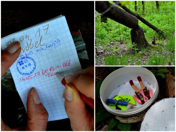 Geocaching, Szprotawa