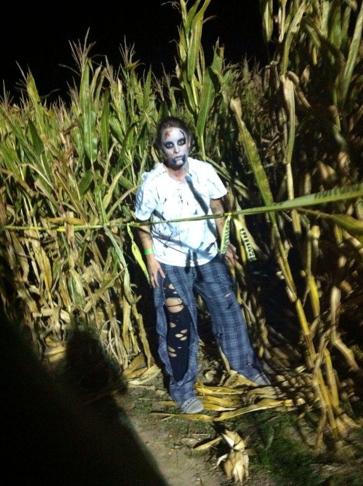 Zombie and corn maze | Garden Maze | Pinterest | Corn maze