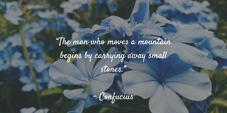 """The man who moves a mountain begins by carrying away small stones.""   - Confucius"