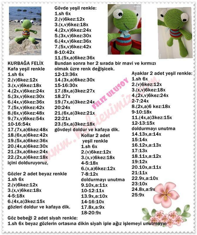 Kurbağa Felix - Açıklamalı Modellerimiz