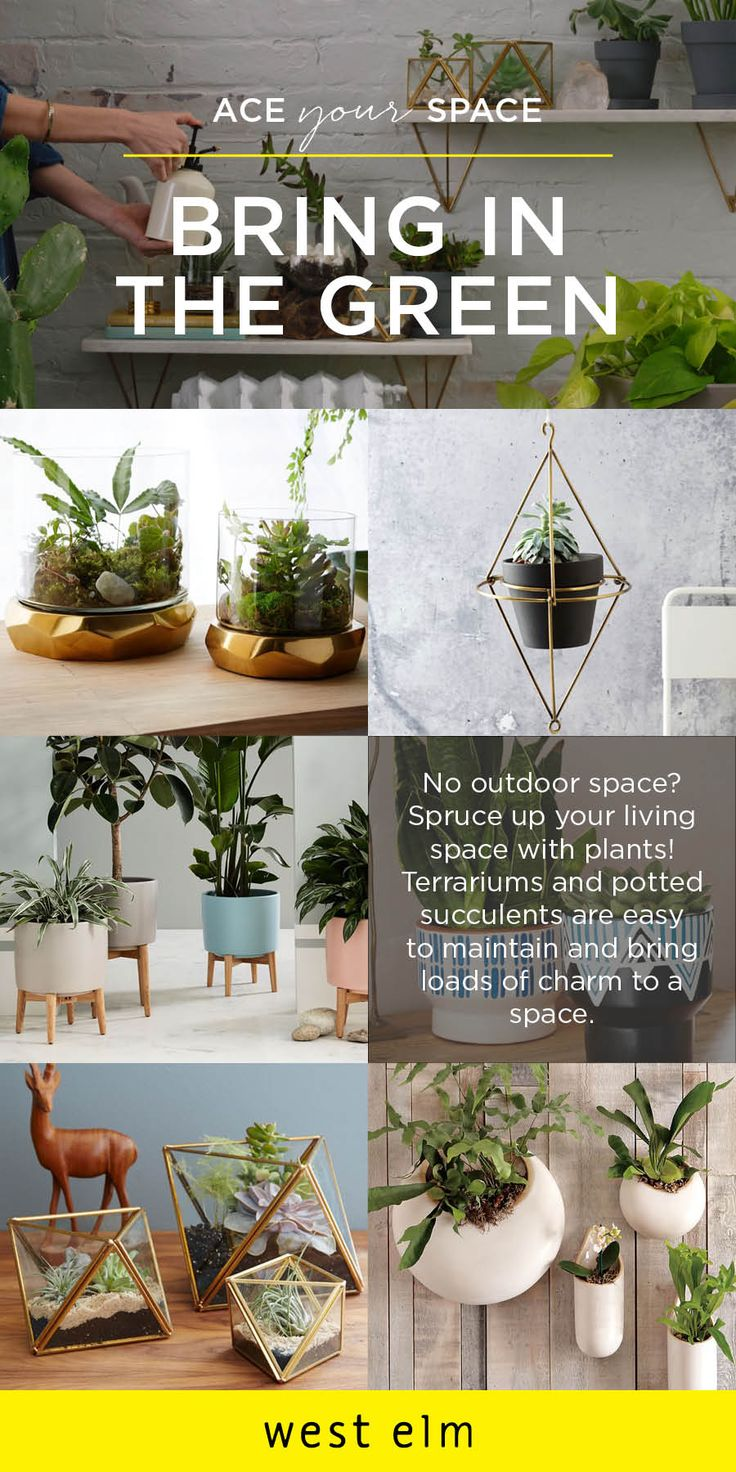 No outdoor space at your apartment? Ace your space! Get the next best thing by bringing in potted plants, terrariums filled with succulents, and hanging planters! College students and faculty get 15% off at west elm.