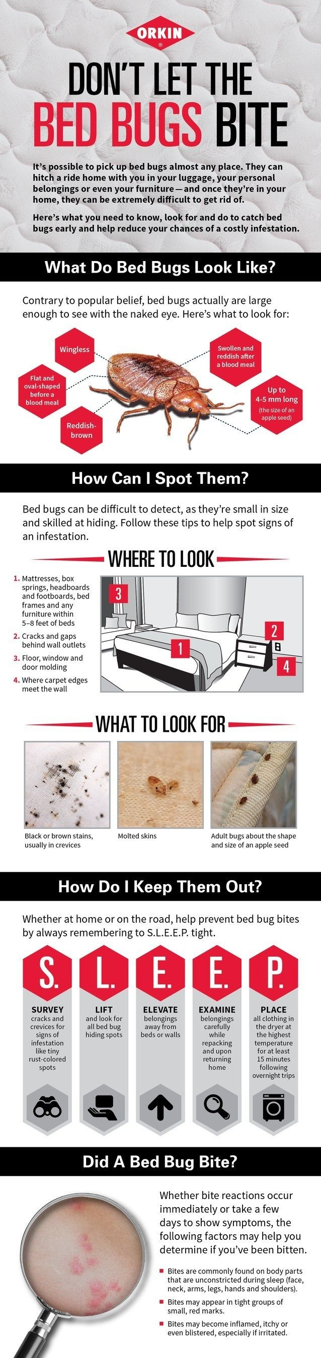 Don't let the bed bugs bite! Bed bugs are great hitchhikers and can make their way onto you or your belongings. Once in your home, bed bugs can be difficult to get rid of. Here are some tips to help you identify and prevent bed bugs from coming into your home.