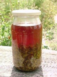 Rezepte: Johanniskrautöl