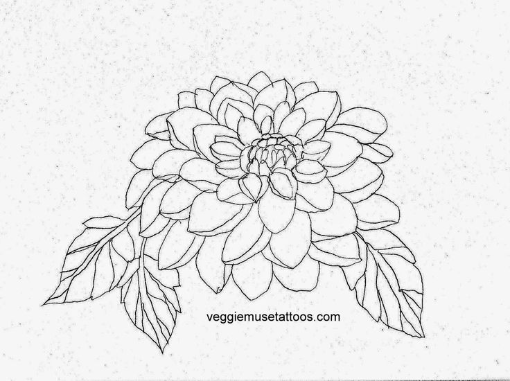 VeggieMuse Art and Design Blog: November Birth Month Flower - Chrysanthemum