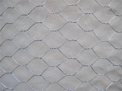 50 best Hexagonal Wire Mesh images on Pinterest | Wire mesh ...