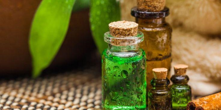Uleiul de tea trea are proprietati extraodinare si intrebuintari diverse, fiind folositor intr-o gama larga de afectiuni. http://boxi.ro/a255