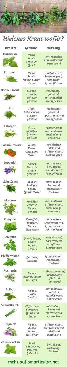 Kitchen herbs ABC: Which herb for what, what fits for what?  -  Hautpflege-Rezepte