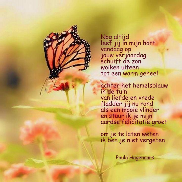 Zeer Uitzonderlijk Gedichten Over Vlinders @UN71 – Aboriginaltourismontario &LU45