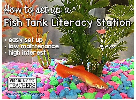 A fish tank literacy station in the classroom: fishtracy or litfish!