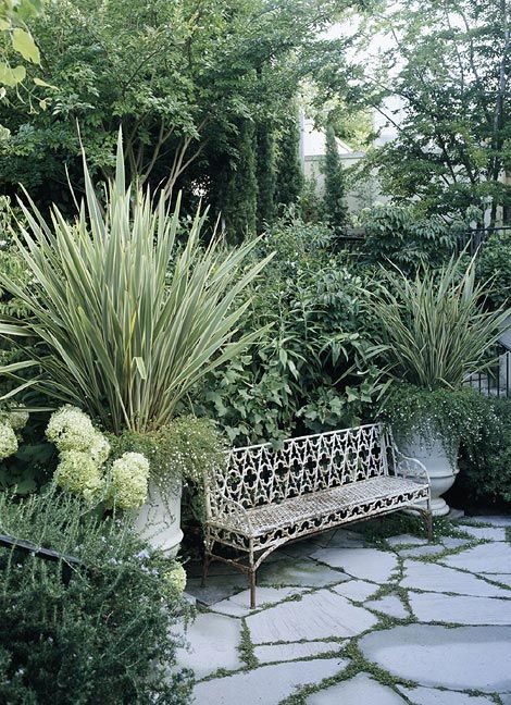 Plants in shades of green and white are selected for their scent, which on a warm summer evening wafts through the open windows, filling the house with perfume.