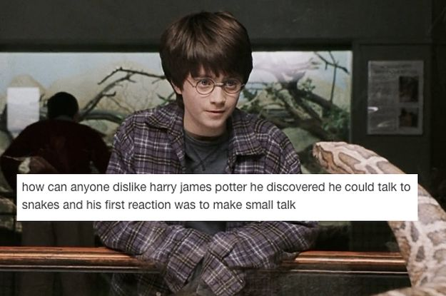27 Times Harry Potter Fans Showed Their True Colours On Tumblr