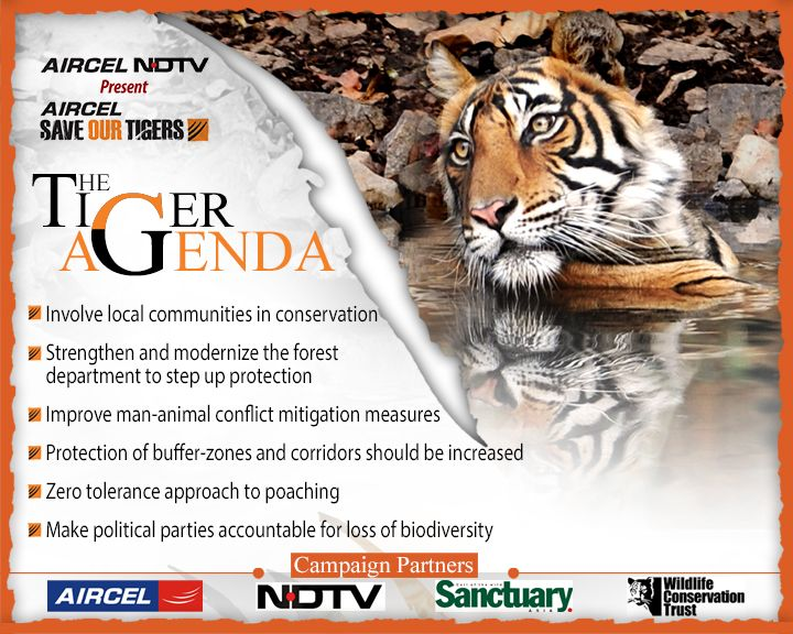speech on save tigers Today's deals for your trip save more on select backpacks, jackets, goggles, outdoor products, and more negligence on the part of humans has led to the tiger.
