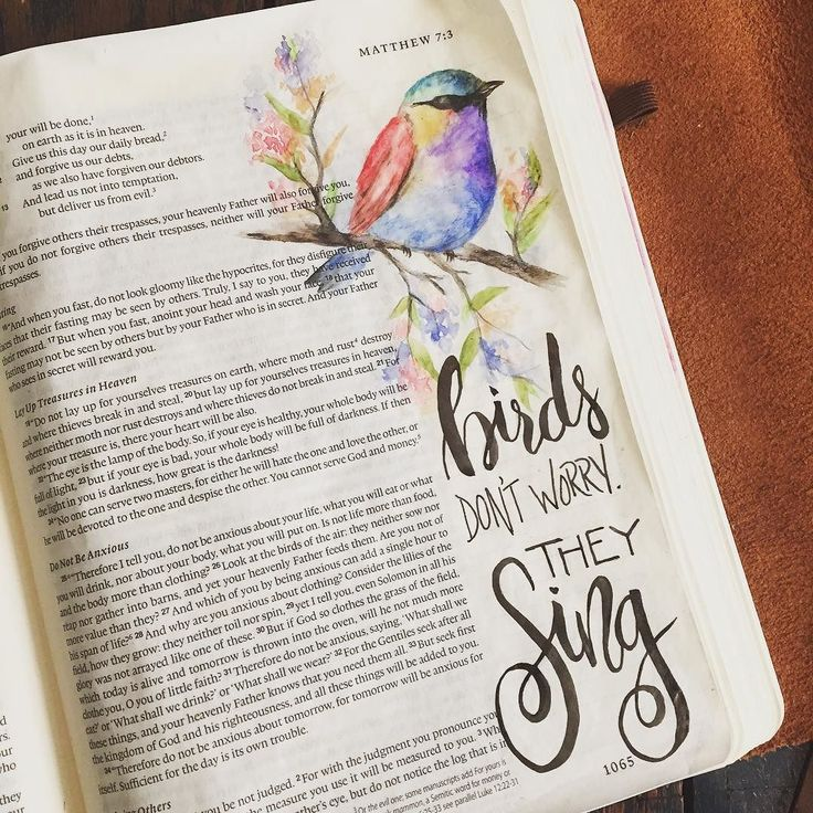 """Look at the birds of the air: they neither sow nor reap not gather into barns and yet your Heavenly Father feeds them. Are you not more valuable than they?"" Matthew 6:26 #biblejournaling #illustratedfaith #handlettering by yvette"
