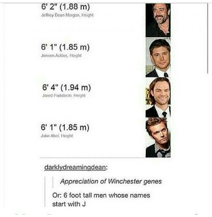 It's okay Winchesters, I appreciate you (and also the 6 foot men who's names start with J)