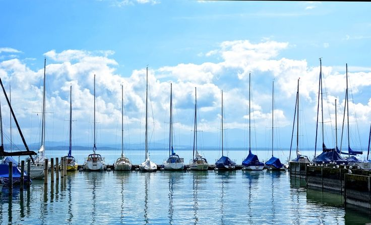 Sails down, boats in the marina
