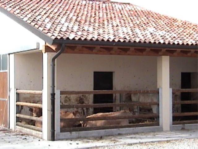 Valdobbiadene home to Proseco. We stayed in a