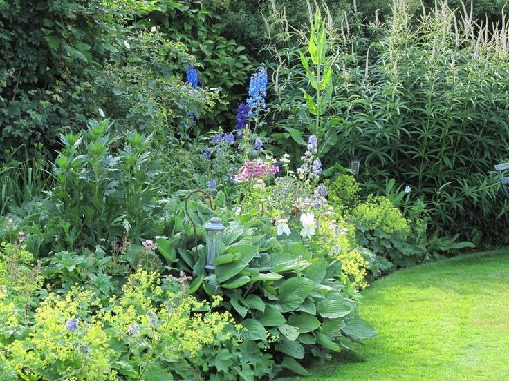 De landelijke tuin - Groen van bij ons - Bloemen en planten