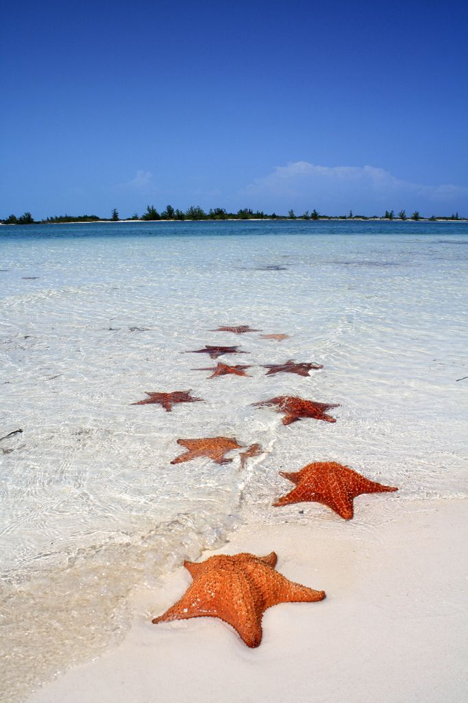 Playa Paraiso, Cuba, o.k., Thanksgiving, Christmas and Super Bowl is over so now I am ready for this:))