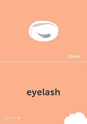 Eyelash #CardFly #flience #human #english #education #flashcard #language