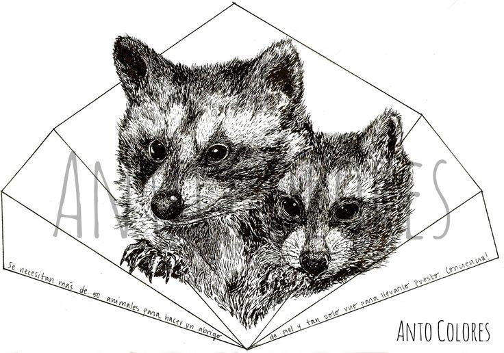 #raccoon #mapaches #antocolores #ilustracion #illustration  www.instagram.com/anto.colores https://www.facebook.com/AntoColores/?ref=aymt_homepage_panel