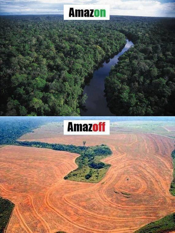 10 best Deforestation before and after ! images on ...