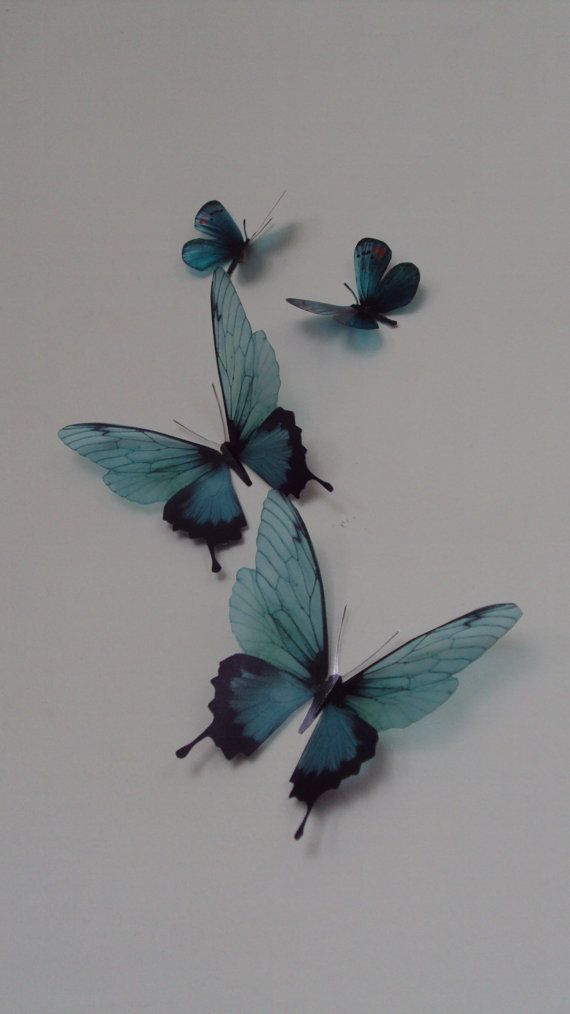 4 Luxury Amazing Teal Blue Butterflies 3D by MyButterflyLove