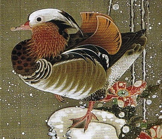 伊藤若冲 Ito Jakuchu/動植綵絵 Doshoku Sai-e(Colorful Realm of Living Beings)03-雪中鴛鴦図 Setchu En-o-zu (Mandarin Ducks in Snow)