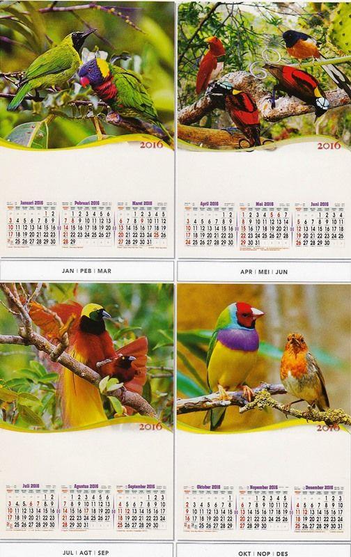 Kalender 2016 - 3 Bulanan Pro - Burung Cantik