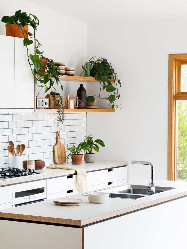 Beautiful all-white kitchen with wood open shelving and tons of potted plants.