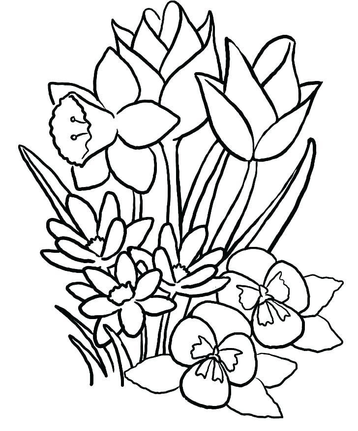 Spring Flowers Coloring Pages Printable Spring Coloring Page