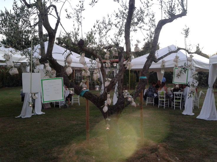 Wedding reception - Olive tree tableau