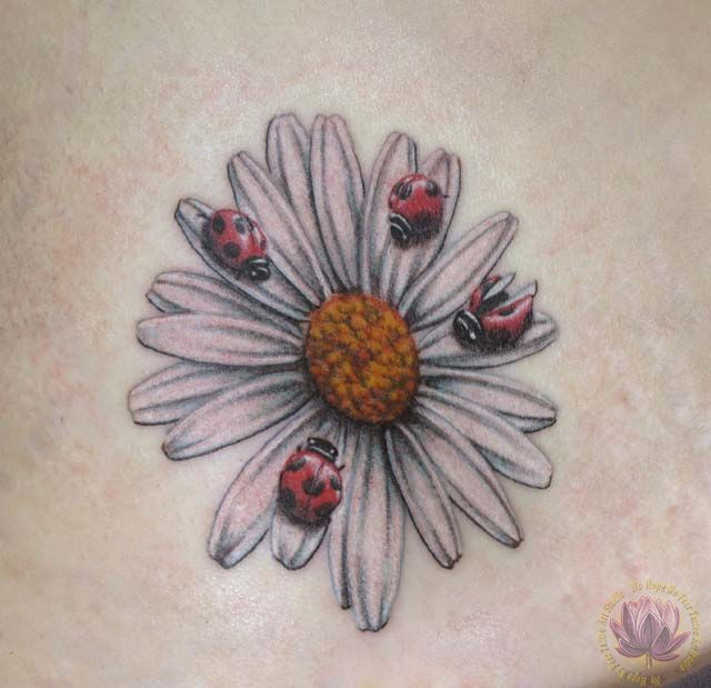 Daisy with lady bug tattoo | Rachel Gilbert Flower Tattoos « No Hope No Fear Tattoo Art Studio More