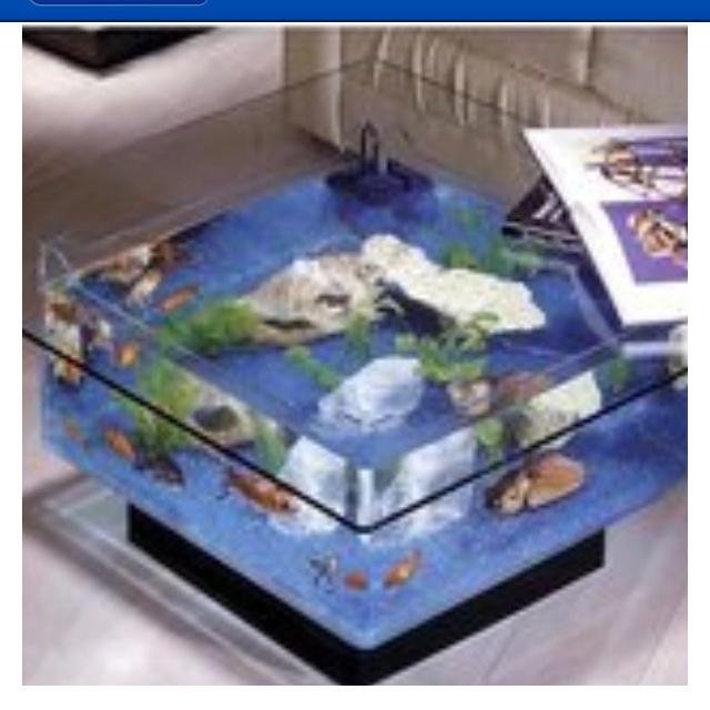 Fish Tank Coffee Table Furniture Pinterest Fish Tank