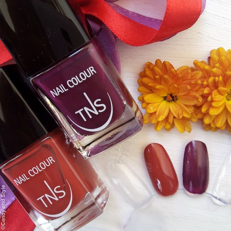 TNS Cosmetics Sweet Temptation Collection