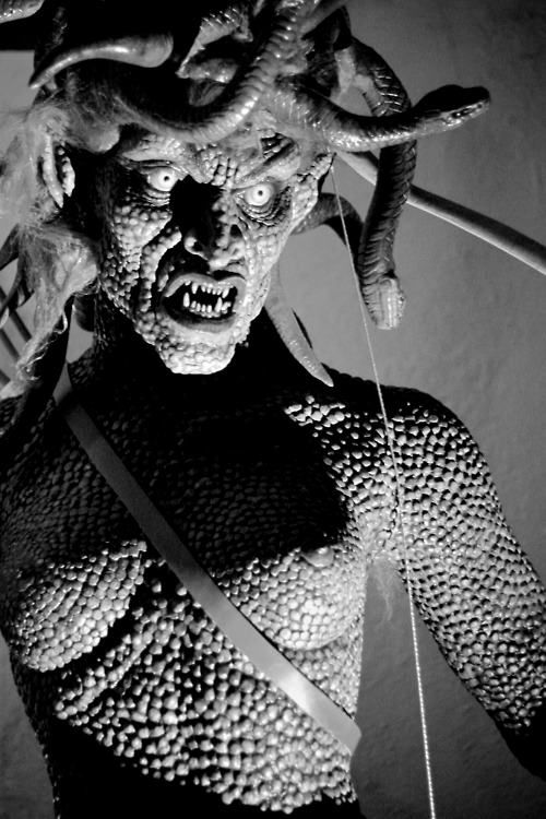 Medusa in Clash of Titans (1981) by Ray Harryhausen  //  This is Ray Harryhausen's depiction of the Gorgon from his 1981 version of Clash of the Titans.  It is likely that she is depicted as evil and ugly in this story since she is seen as an antagonist and is killed.