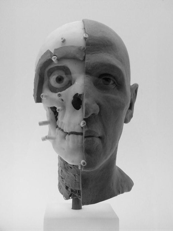 Face Value - Forensic Facial Reconstruction by Susan Keller - photo available to buy on Etsy