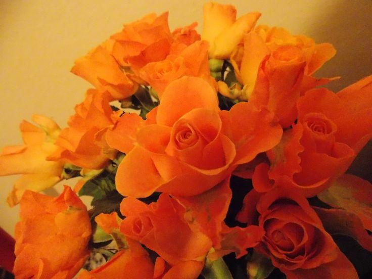Beautiful roses for me ♥